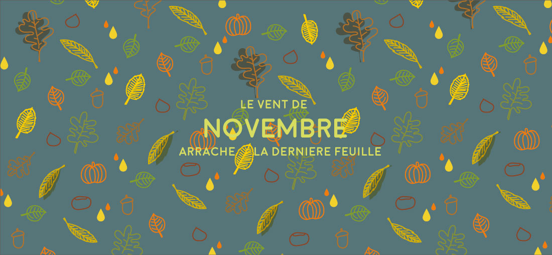 clarabee_novembre